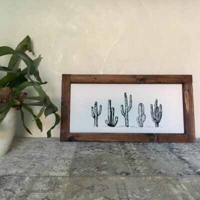 Five cactuses 50x25