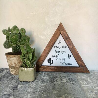 e moet je billen beter vegen want er zit nog cactussen 30x25